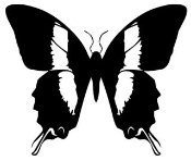 Butterfly 10 Decal Sticker