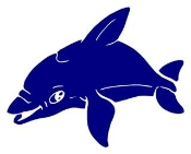 Dolphin 3 Decal Sticker