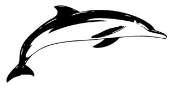 Dolphin 5 Decal Sticker