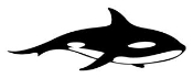 Killer Whale 2 Decal Sticker