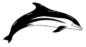 Dolphin 9 Decal Sticker