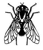 Fly 1 Decal Sticker