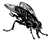Fly 2 Decal Sticker