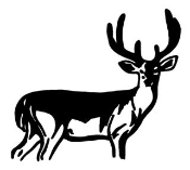 Deer 2 Decal Sticker
