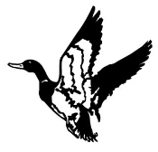 Duck 6 Decal Sticker