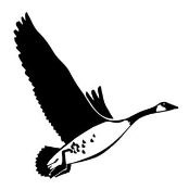 Goose Decal Sticker
