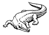 Alligator 1 Decal Sticker