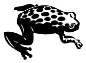 Tree Frog Decal Sticker