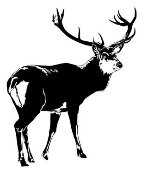 Deer 4 Decal Sticker