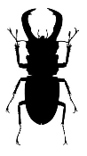 Beetle v4 Decal Sticker