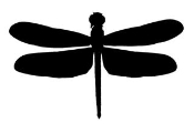 Dragonfly Decal Sticker