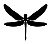 Dragonfly 2 Decal Sticker