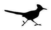 Bird Silhouette v8 Decal Sticker