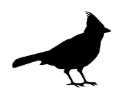 Cardinal Silhouette Decal Sticker