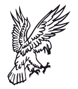 Eagle v9 Decal Sticker