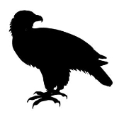 Eagle Silhouette v2 Decal Sticker