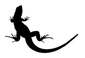 Lizard Silhouette 1 Decal Sticker