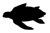 Sea Turtle Silhouette Decal Sticker