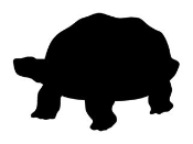 Turtle Silhouette 2 Decal Sticker