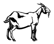 Goat Decal Sticker