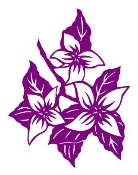 Orchid Flowers Decal Sticker