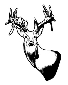 Deer Head 8 Decal Sticker