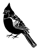 Cardinal Decal Sticker