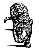 Cheetah Decal Sticker