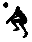 Volleyball Player Silhouette v1 Decal Sticker