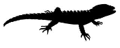 Lizard Silhouette 6 Decal Sticker