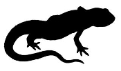 Lizard Silhouette 11 Decal Sticker