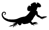 Lizard Silhouette 14 Decal Sticker