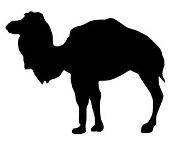 Camel Silhouette v6 Decal Sticker