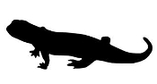 Lizard Silhouette 20  Decal Sticker