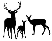 Deer Family 2 Decal Sticker