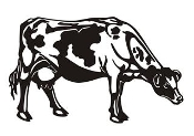 Dairy Cow Decal Sticker