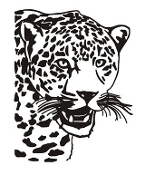 Cheetah Head Decal Sticker