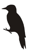 Bird Silhouette v12 Decal Sticker