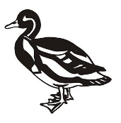 Farm Duck 2 Decal Sticker