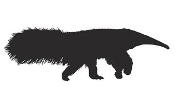 Anteater Silhouette v2 Decal Sticker