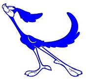 Road Runner v4 Decal Sticker