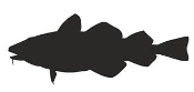 Cod Silhouette Decal Sticker