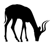 Antelope Silhouette v5 Decal Sticker