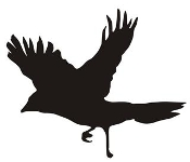 Bird Silhouette v15 Decal Sticker