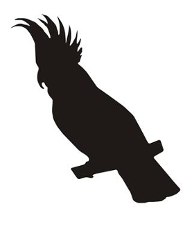 Cockatiel Silhouette Decal Sticker