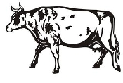 Cow v10 Decal Sticker