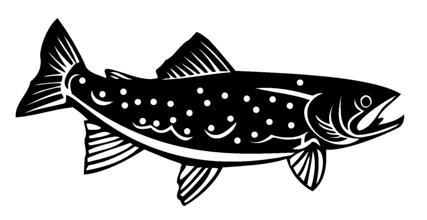 Image Gallery Tribal Trout