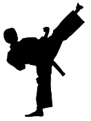 Karate Silhouette v3 Decal Sticker
