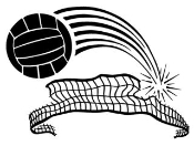 Volleyball and Net v3 Decal Sticker