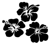 3 Hibiscus Flowers v1 Decal Sticker